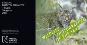 Mostra Wildlife Photographer of the Year @ Fortezza Firmafede