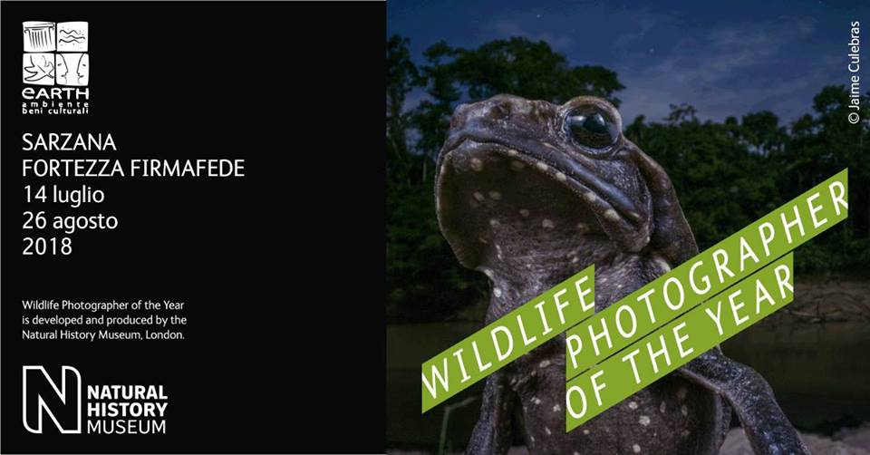 Mostra Wildlife Photographer of the Year